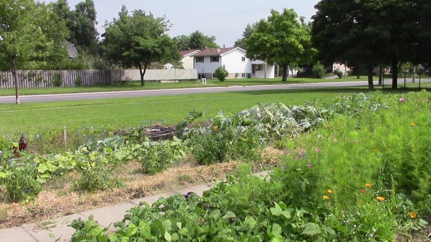 lyon's St Garden 2